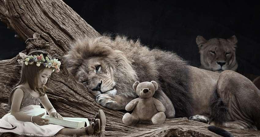 Lejonhanne lyssnar på saga vilande på trädstam med en nalle i förgrunden och en lejoninna i bakgrunden. Liten flicka med krans i håret läser högt.